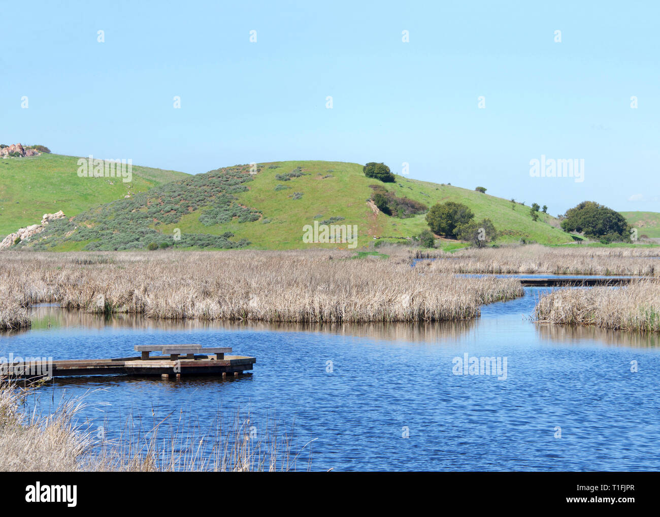 Rains relieve Drought conditions in California. Previously dried up lake bed with pier jetty out in Coyote Hills, Northern California with green hills - Stock Image