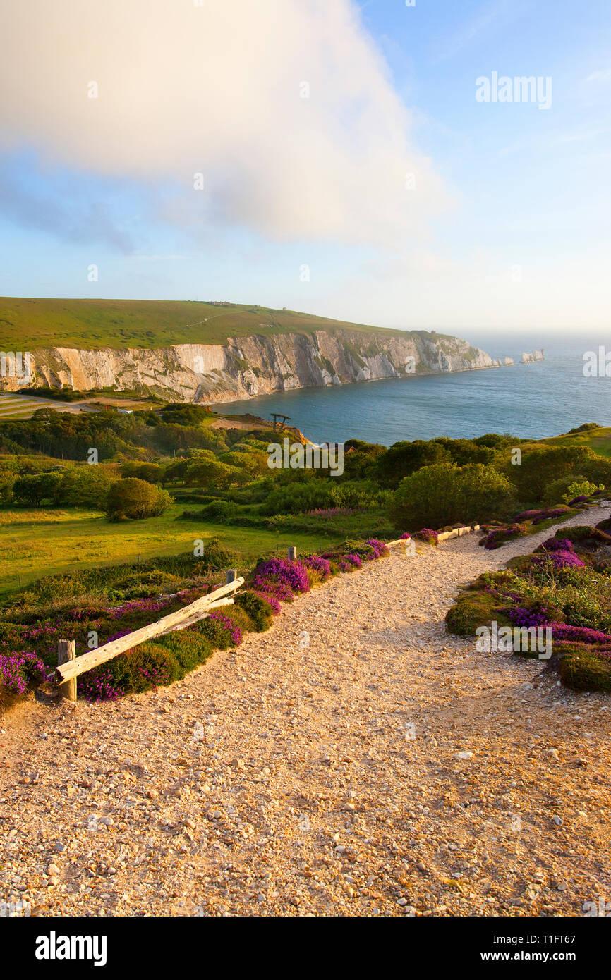 views,of,The,Needles,Alum,bay,From,Headon,Warren,Isle of Wight, England, UK, - Stock Image