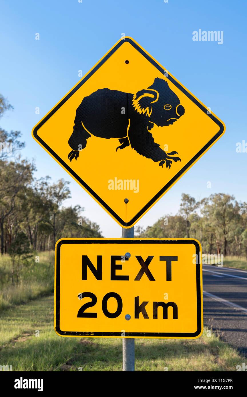 Beware of Koalas crossing road sign in Queensland, Australia - Stock Image