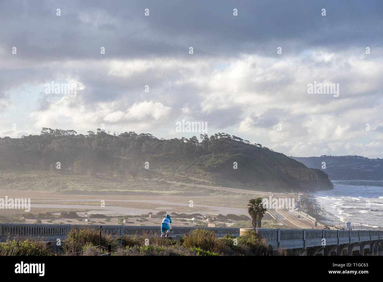View of Torrey Pines State Beach and Torrey Pines State Natural Reserve. La Jolla, California, USA. - Stock Image