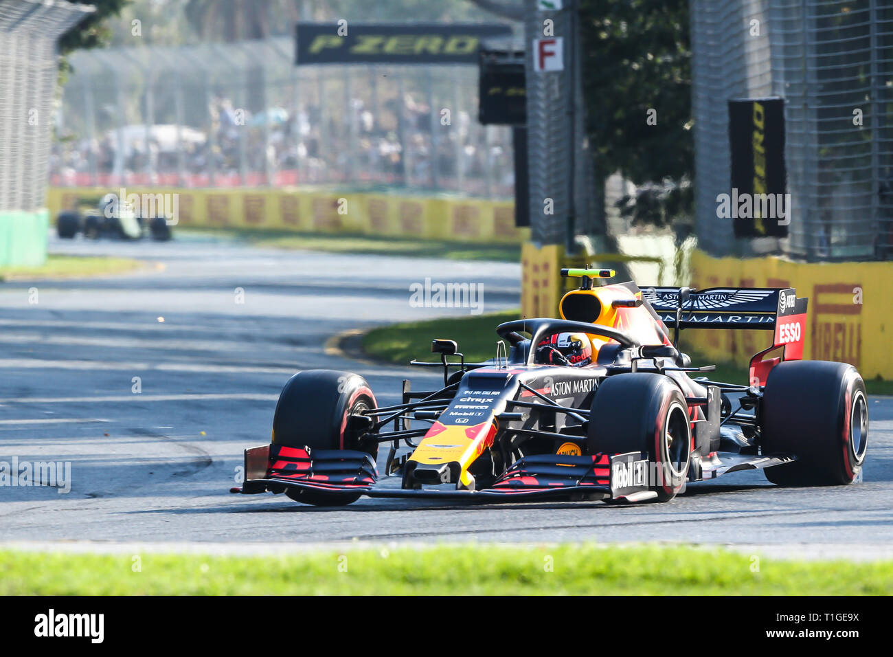 MELBOURNE, AUSTRALIA - MARCH 16: Pierre GASLY of Aston