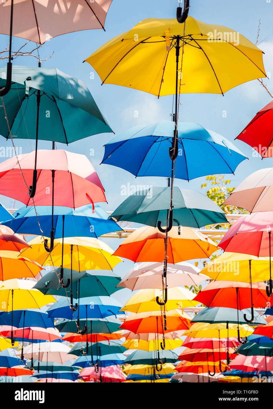 Colorful umbrella background in the sky Stock Photo