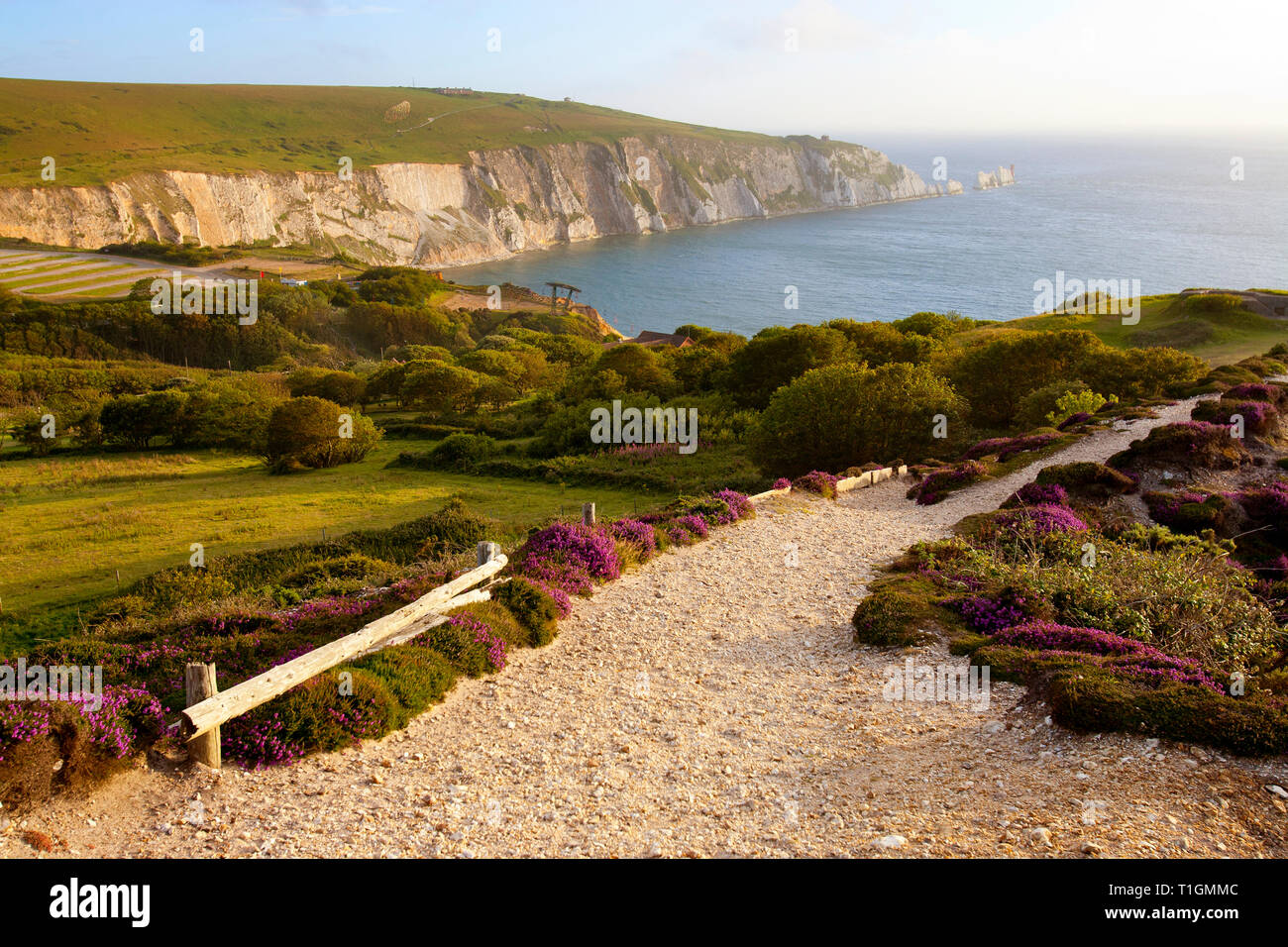 views,of,The,Needles,Alum,bay,From,Headon,Warren,Isle of Wight, England, UK, Stock Photo