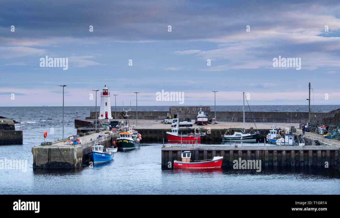 Lybster Harbour, Caithness, Scottish Highlands, Scotland, UK - Stock Image