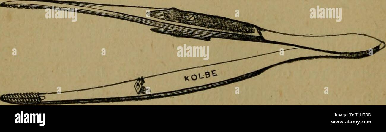 Artery Forceps Stock Photos & Artery Forceps Stock Images - Alamy