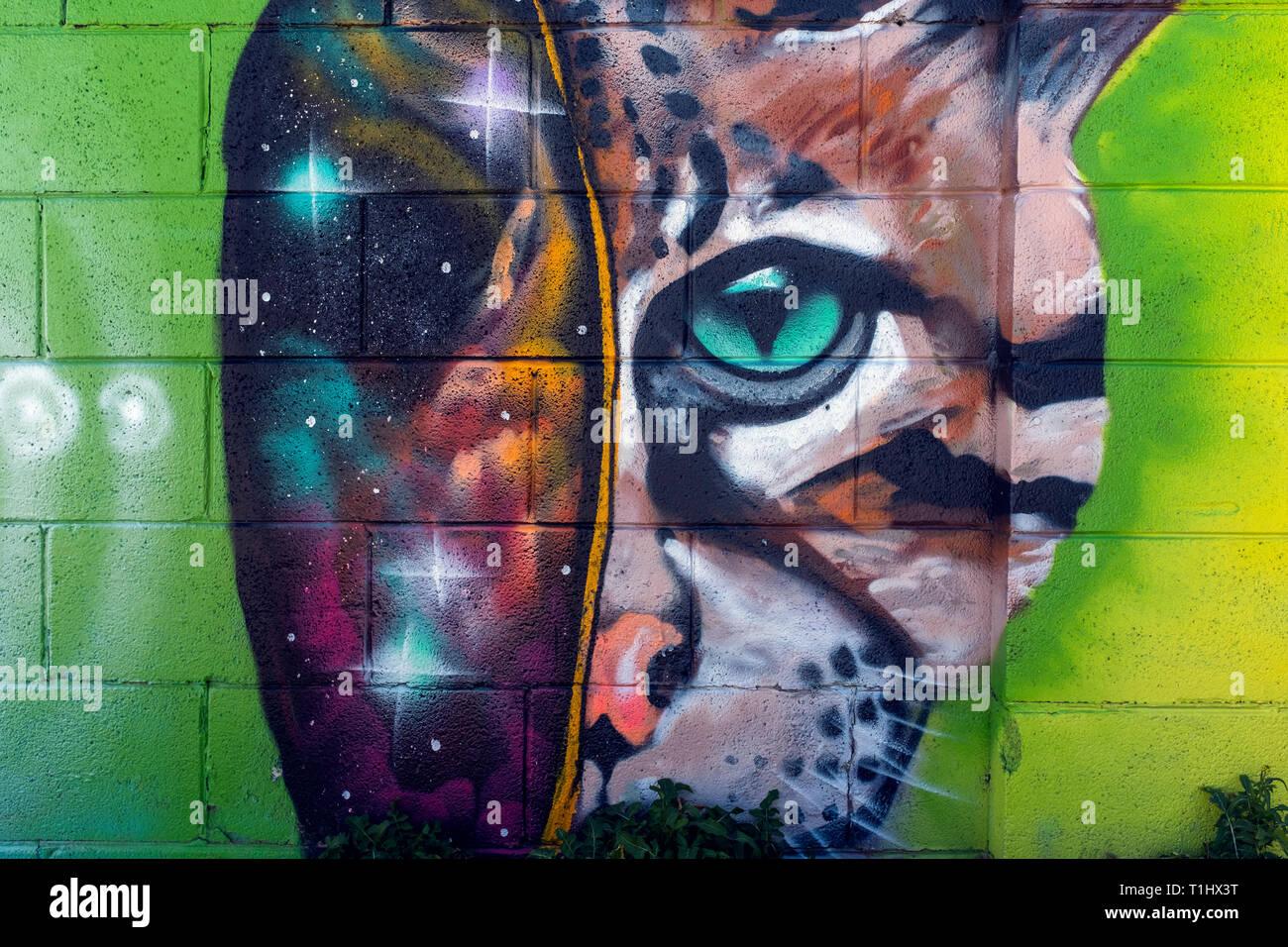 street art attributed to Mothership Alumni : Vela & Bird-noise - Stock Image