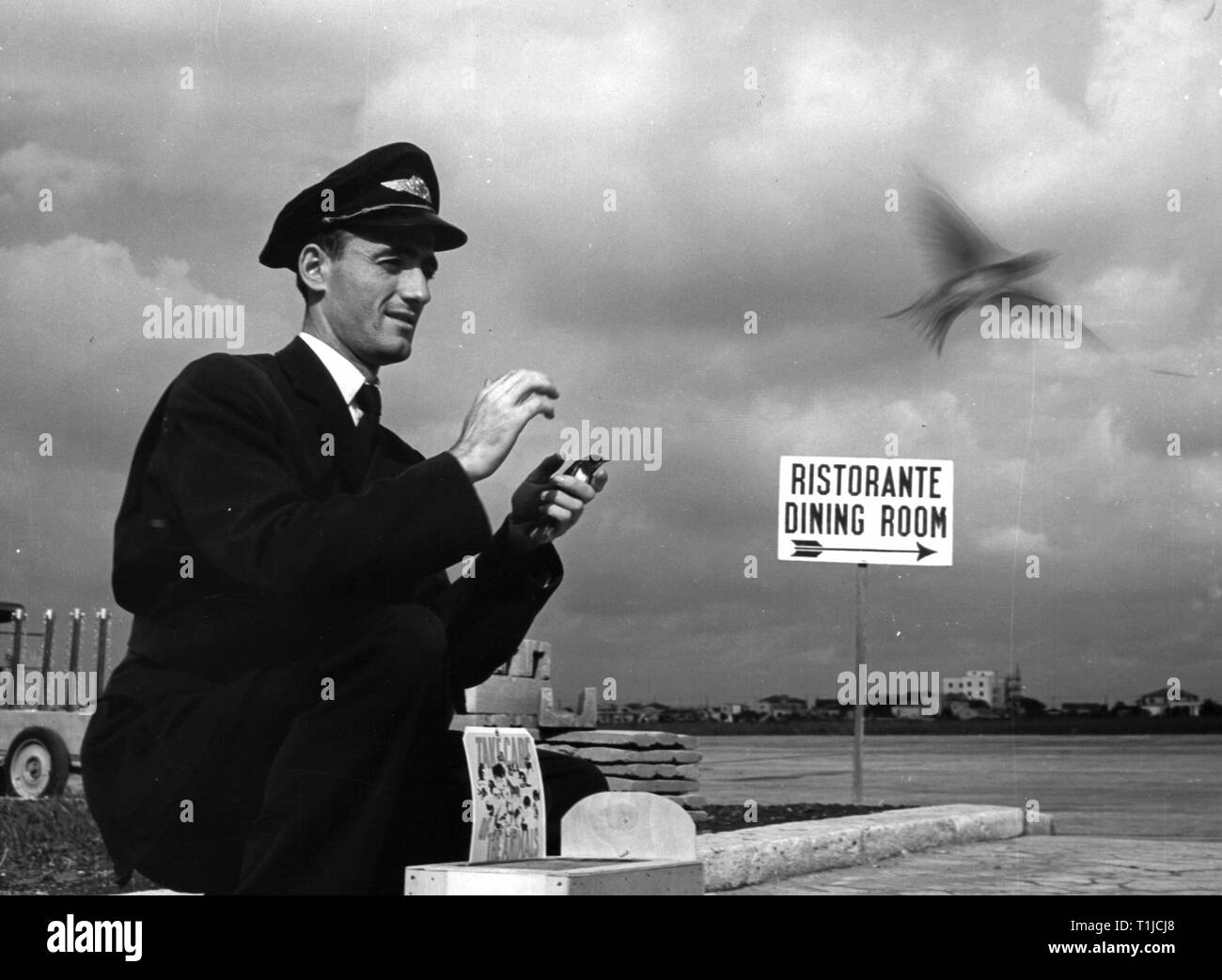 transport / transportation, aviation, personal, stewart of the SAS Scandinavian Airlines System, freeing swallows, campaign 'Take care of the Animals', Rome-Ciampino Airport, 1950s, Additional-Rights-Clearance-Info-Not-Available - Stock Image