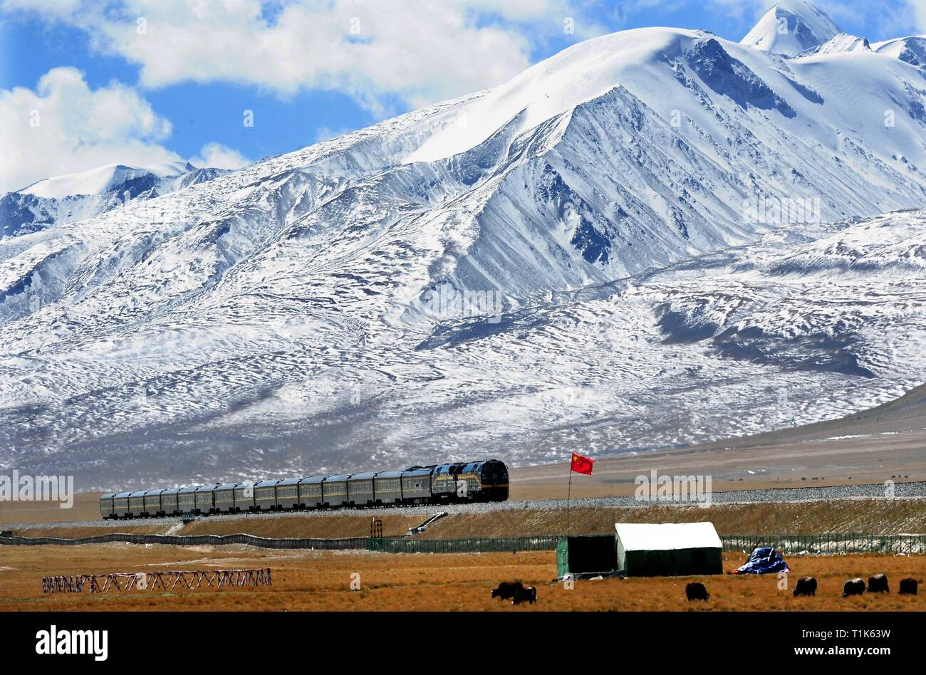 Beijing, China's Tibet Autonomous Region. 28th Sep, 2014. A train is going on the Nagqu section of Qinghai-Tibet railway, southwest China's Tibet Autonomous Region, Sept. 28, 2014. Credit: Wang Song/Xinhua/Alamy Live News - Stock Image