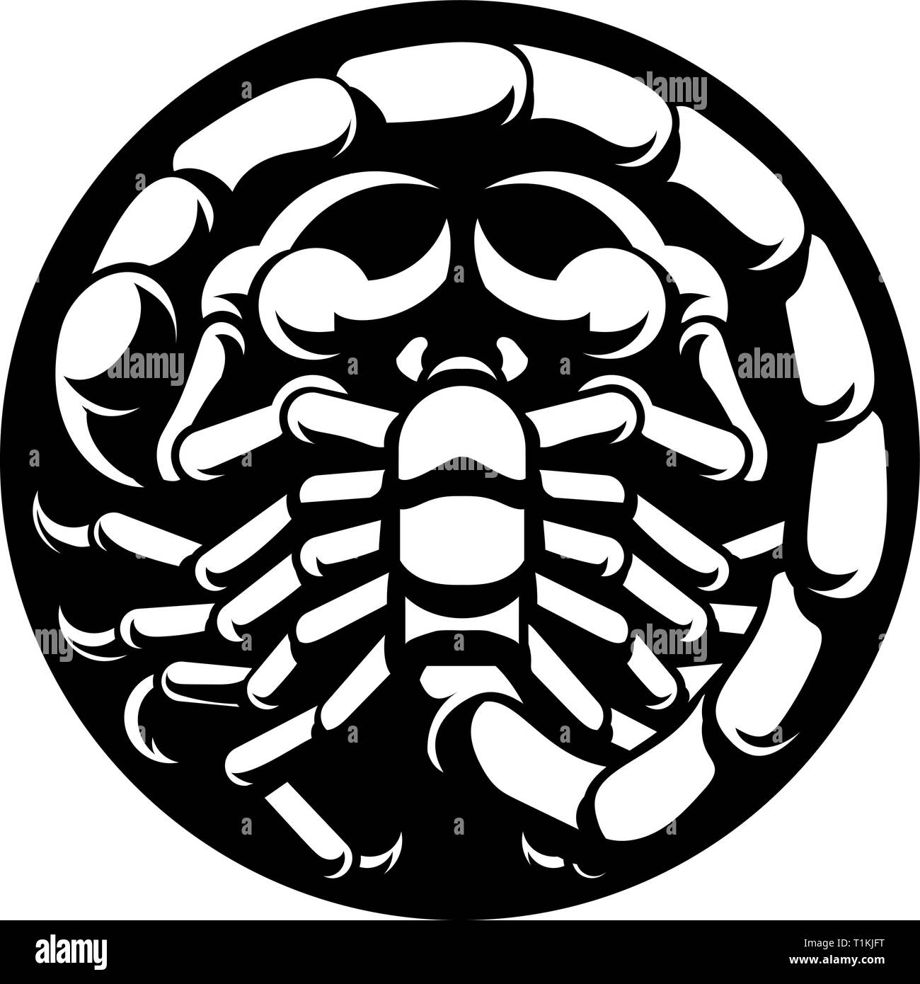 Zodiac Signs Scorpio Scorpion - Stock Image