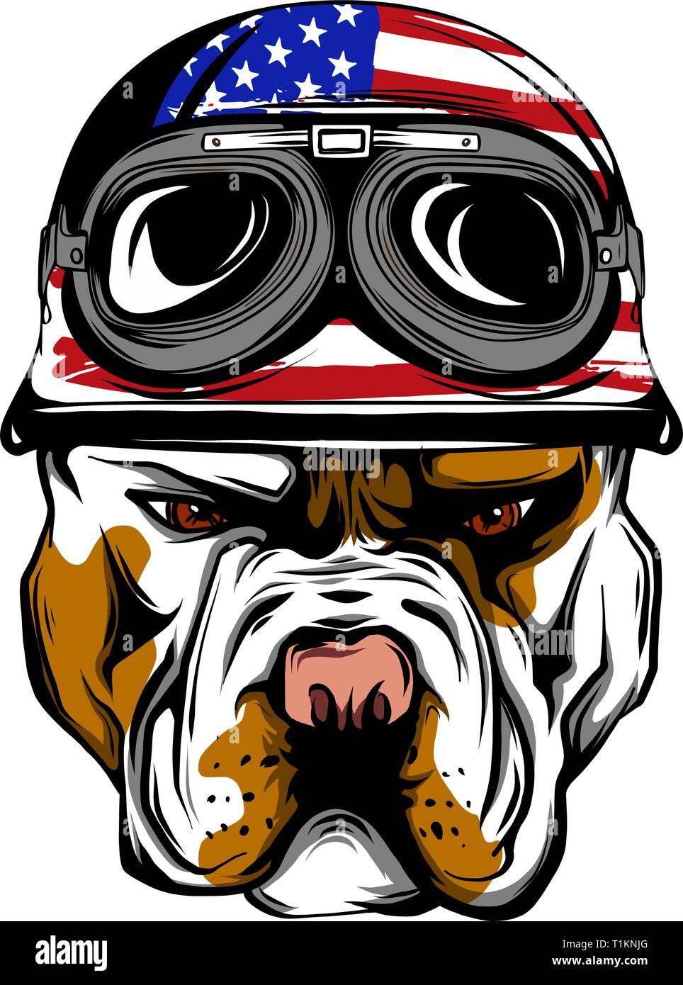 Vector face of bulldog biker with helmet. Motorcycle rider illustration. Shirt graphics. Isolated on white background. - Stock Vector