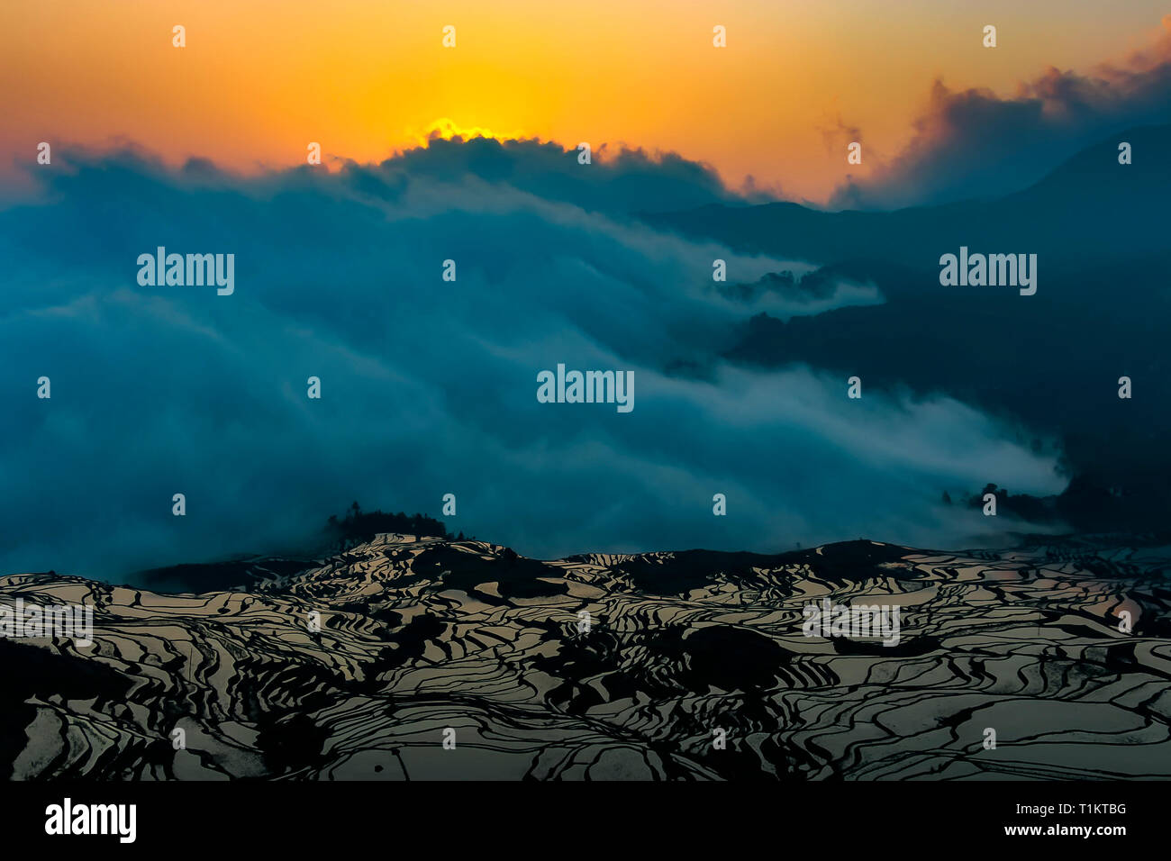 Sunrise at Yuanyang rice terraces and the sea of clouds, 1900 meters above sea level - Stock Image