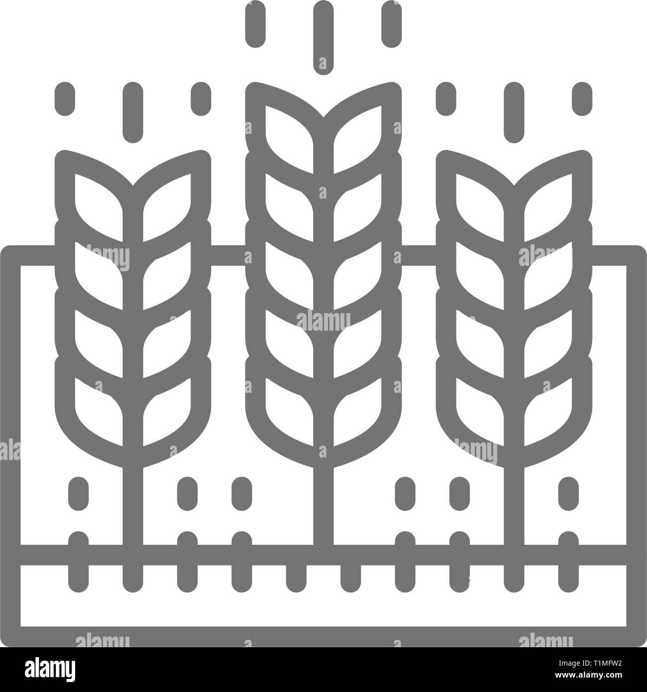 Wheat field, agricultural landscape, farmland line icon. - Stock Vector
