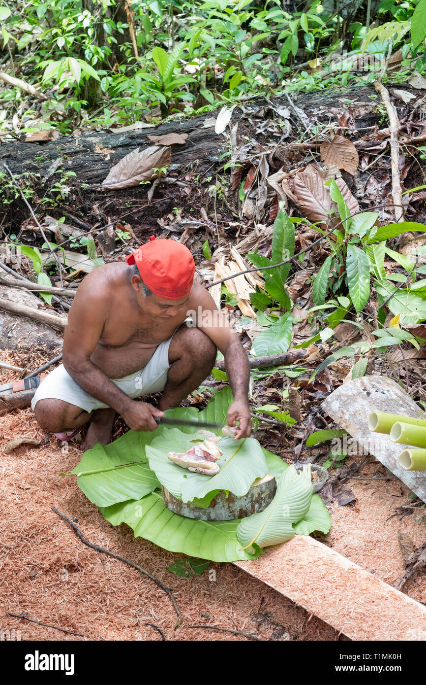 Indigenous Alfur people of the Nuaulu group making a traditional earth oven, Seram island, Maluku, Indonesia - Stock Image
