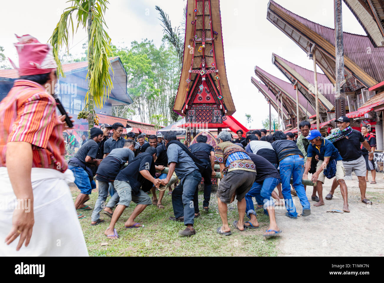 A funeral procession and ritual in a village in Tana Toraja, Sulawesi, Indonesia - Stock Image
