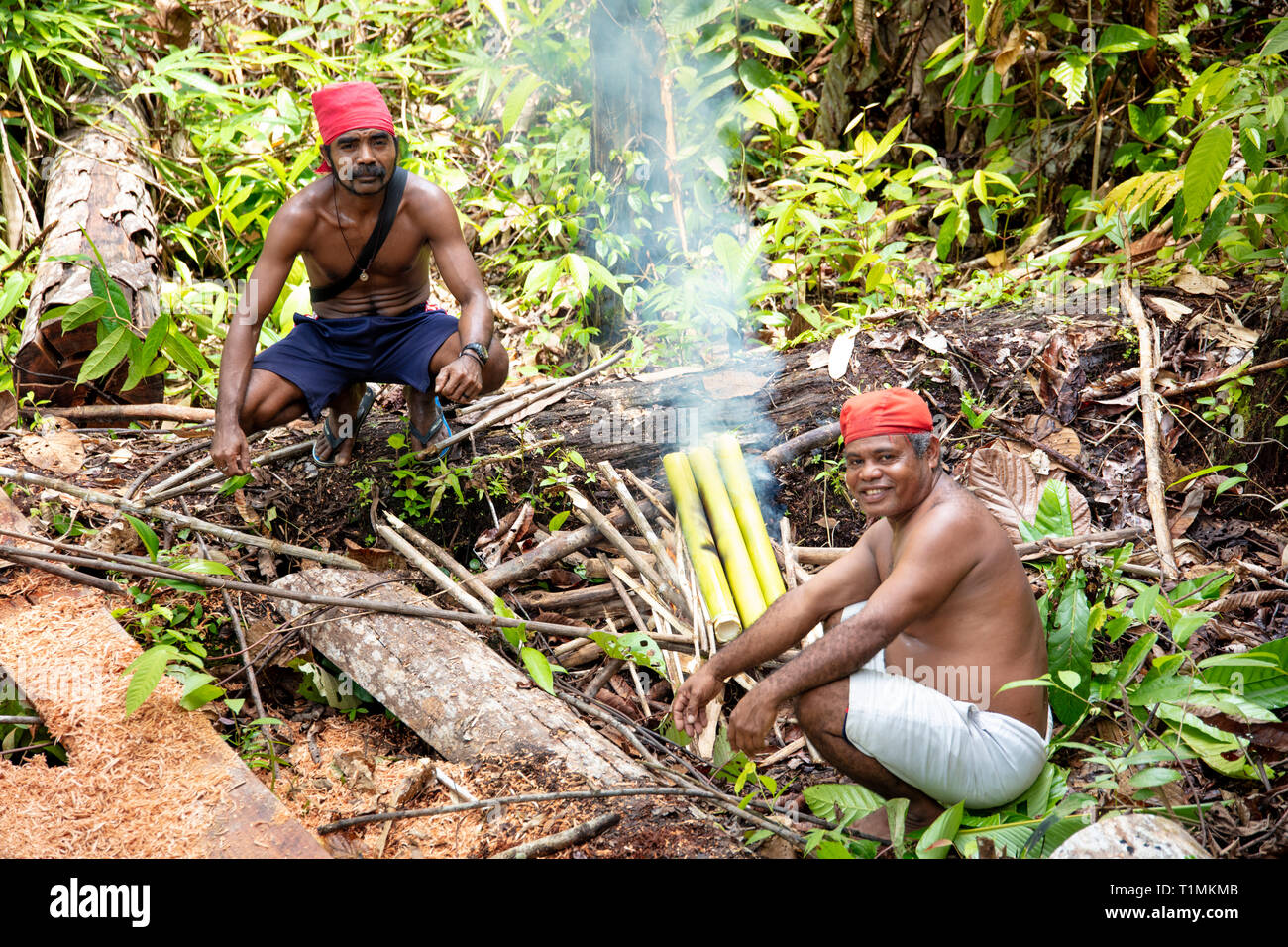 Indigenous Alfur hunters of the Nuaulu group making an Earth oven in the rainforest, Seram island, Maluku, Indonesia - Stock Image