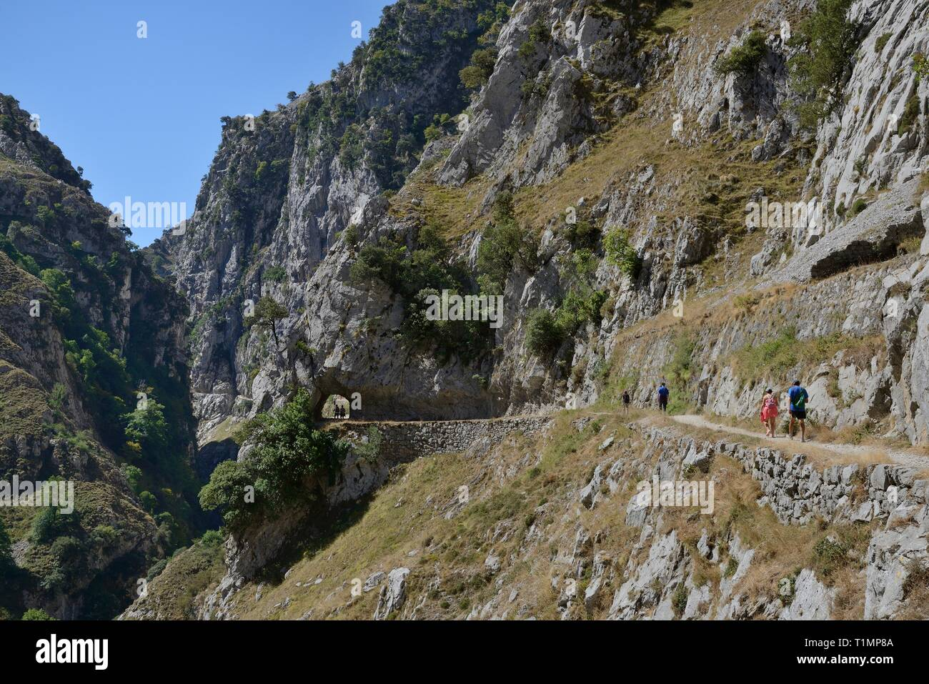Hikers on the Cares Gorge trail, with some going through an excavated rock tunnel, Picos de Europa mountains, Asturias, Spain, August 2016. - Stock Image
