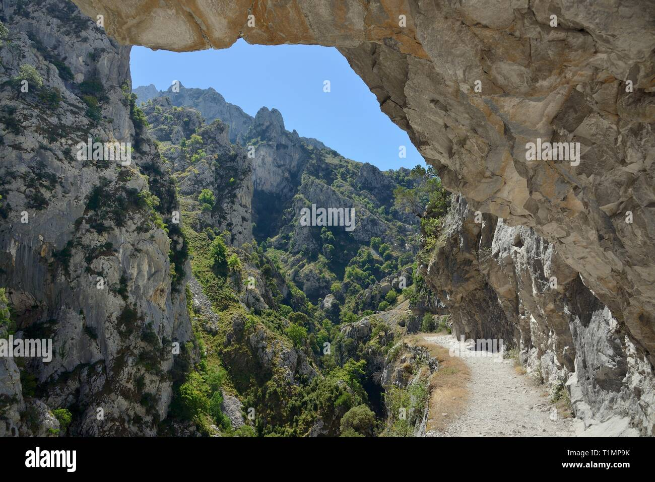 Cares Gorge trail with overhanging rocks and an 800m drop beside the path in places, Picos de Europa mountains, Asturias, Spain, August 2016. - Stock Image