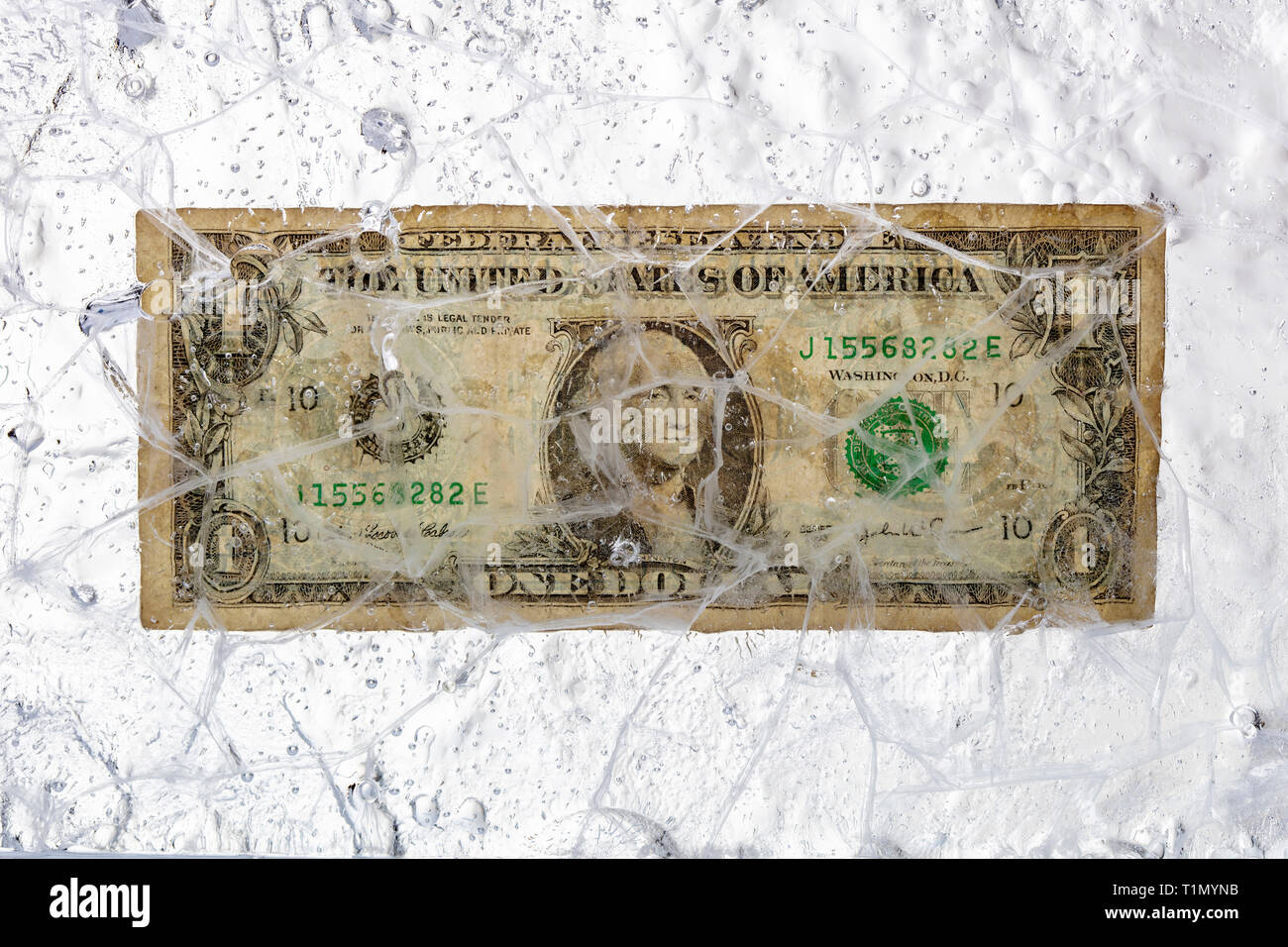 Dollar bill frozen in a block of ice. Concept of blocked capital and financial crisis. - Stock Image