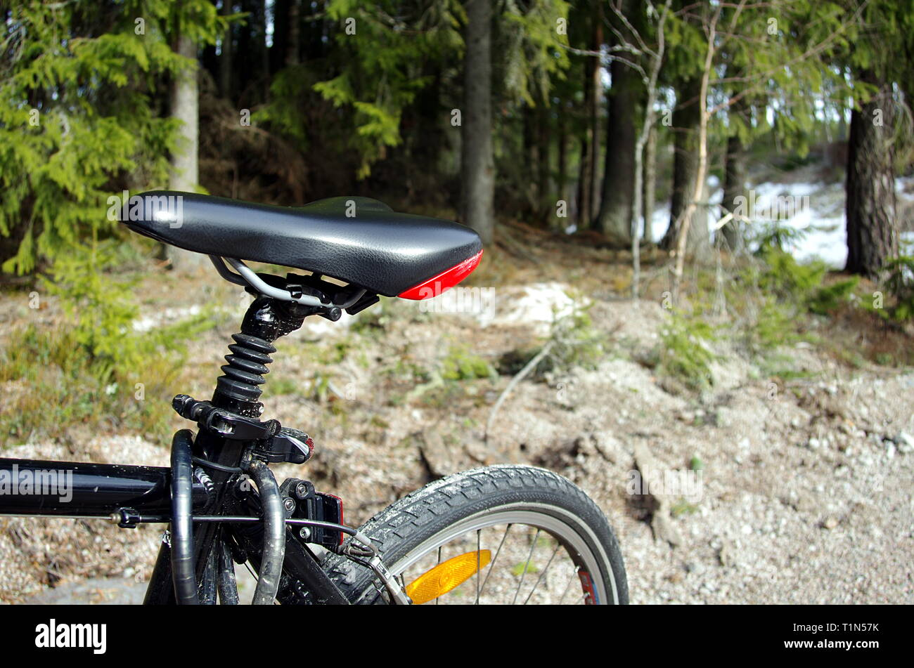 Bicycle close up in the forest - Stock Image
