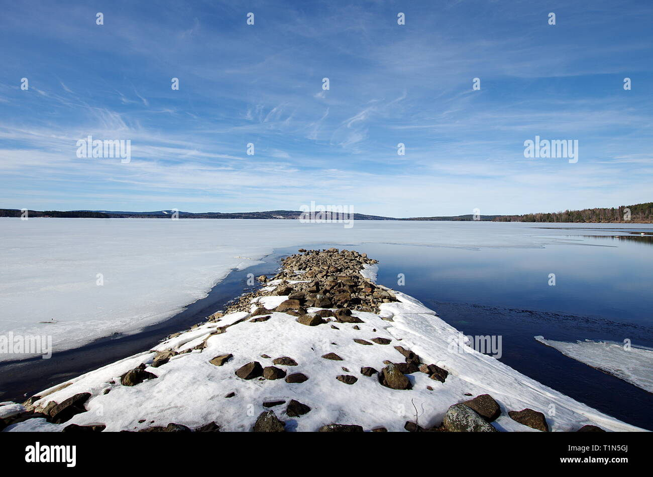 Ice on lakes are melting and trees are growing again,spring is in the air. - Stock Image