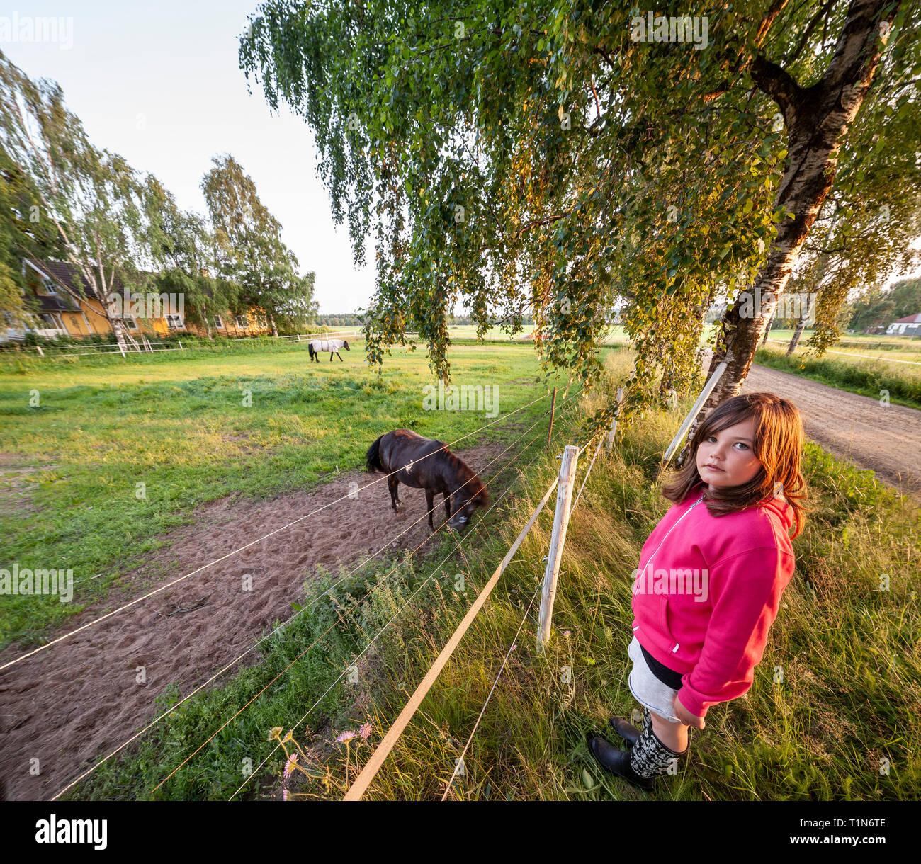 Girl and a horse. Dalarna / Dalecarlia, Sweden, Scandinavia. Stock Photo
