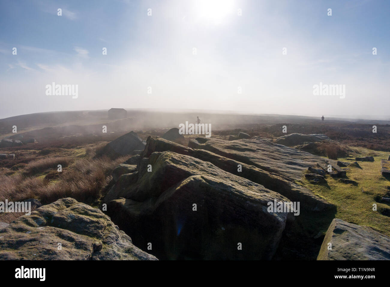 Cross-country runners running on Ilkley moor on a misty morning - Stock Image