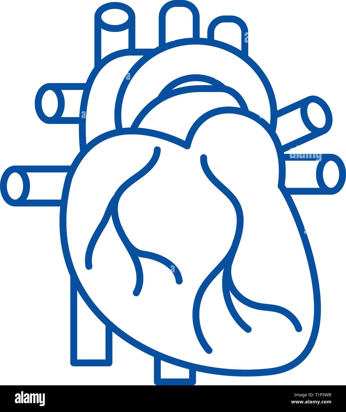 Human heart line icon concept. Human heart flat  vector symbol, sign, outline illustration. - Stock Image