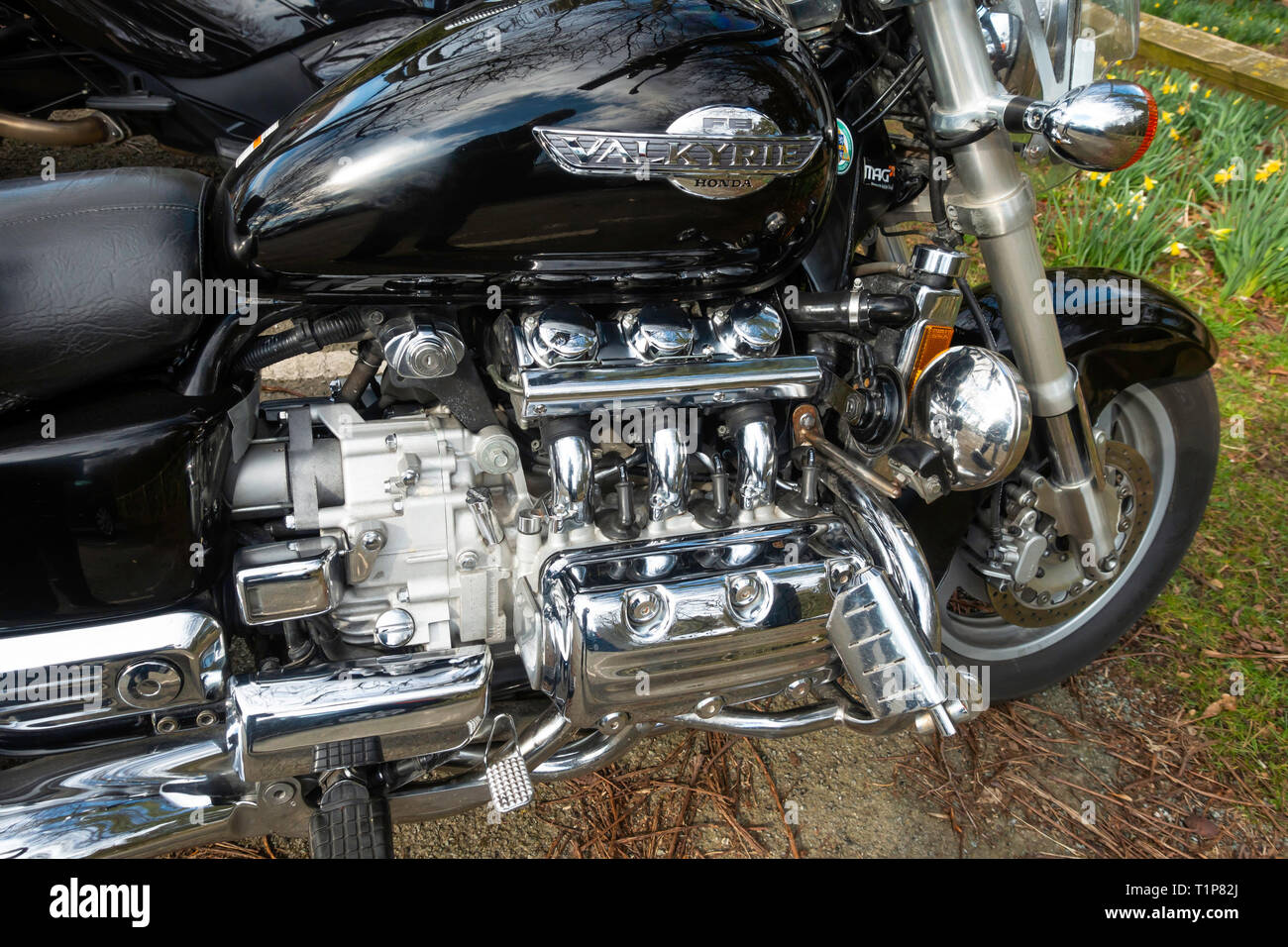 Close up engine of a Honda Valkyrie F6 flat six cylinder motor cycle Stock Photo