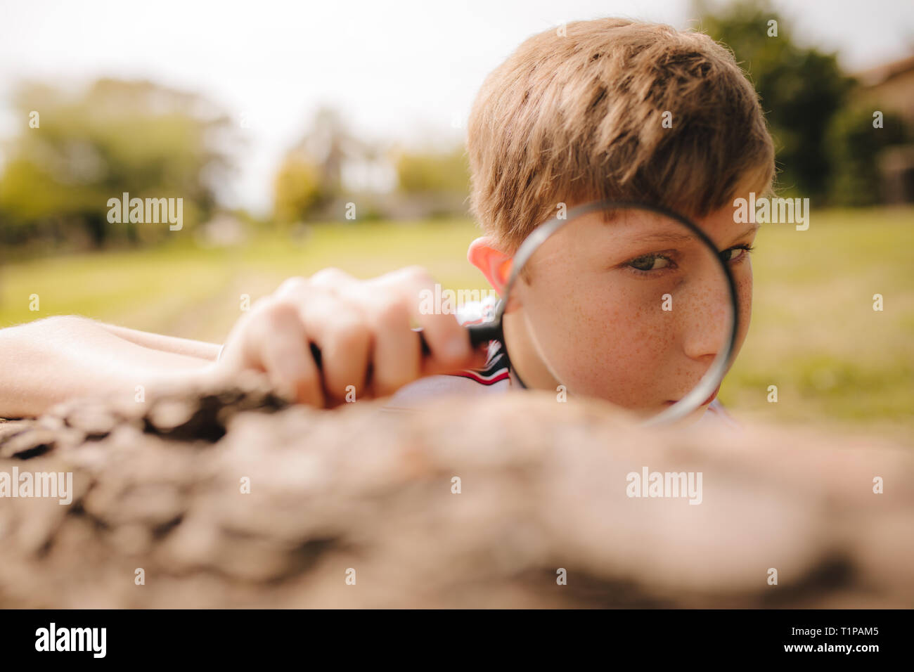 Boy looking through magnifying glass on a sunny day. Boy exploring with magnifying glass. - Stock Image