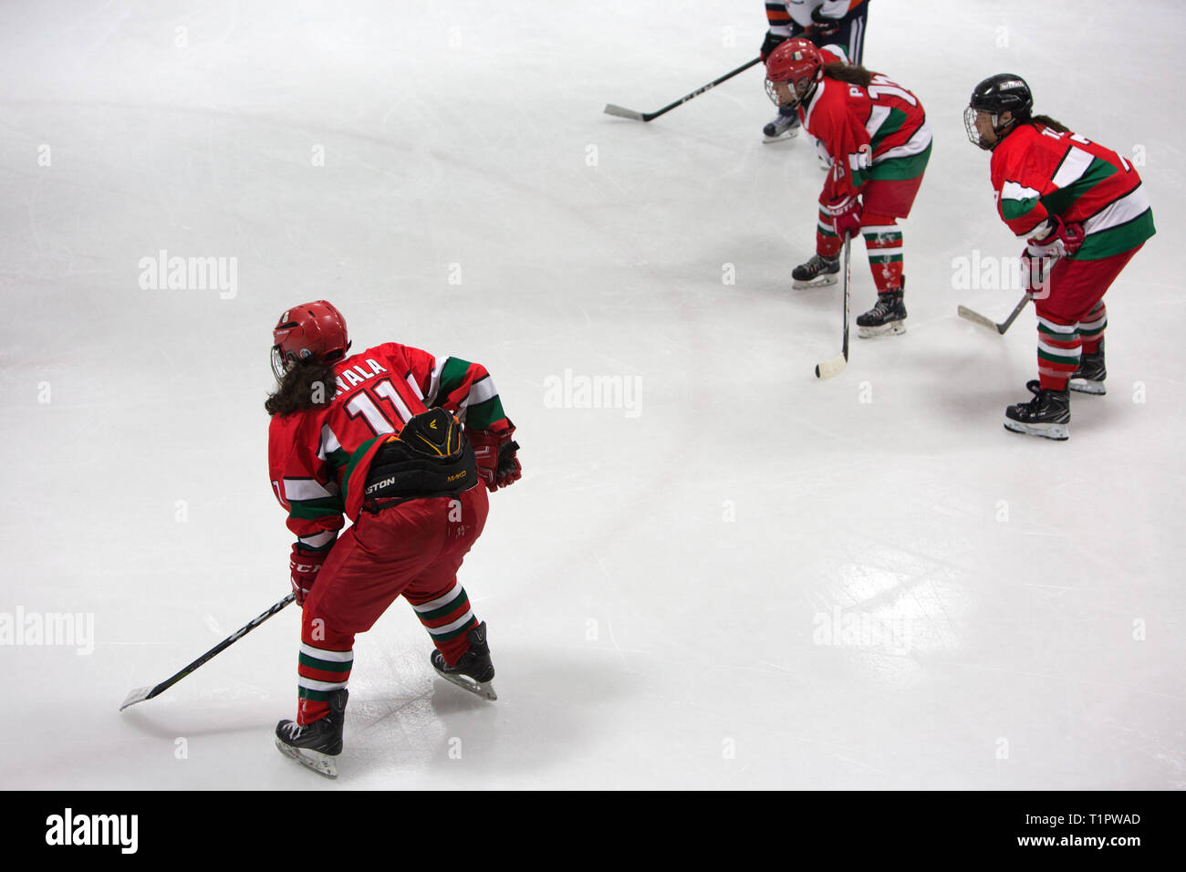 """The Selección femenil de México de hockey sobre hielo, plays against the Buffalos Metepec in the """"Midget"""" Hockey League during a match at the Winter Sports Center Metepec in Metepec, State of Mexico, Mexico on February 15, 2019. The score was 3-3. Founded in 2012, the Selección femenil de México de hockey sobre hielo is the first and only women's national ice hockey team in Mexico, a country where ice rinks are expensive and rare. In the 2017 IIHF Women's World Championship Division II in Iceland, the team defied expectations; They wonGroup B, securing their promotion to Group A,andbecamet - Stock Image"""