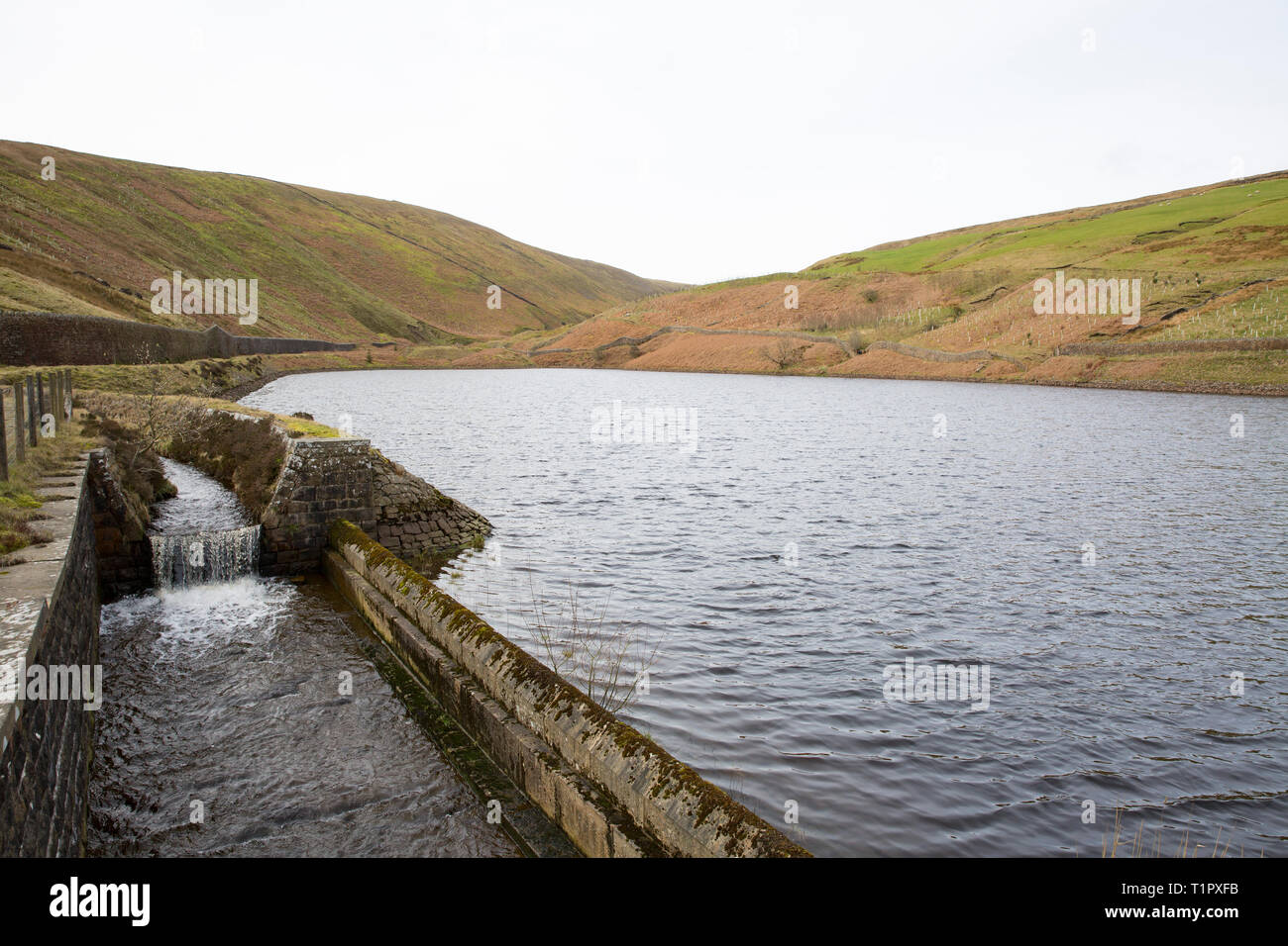 A view of Upper Ogden reservoir above the village of Barley, in the Borough of Pendle Lancashire. The area is popular with walkers and known for the P - Stock Image