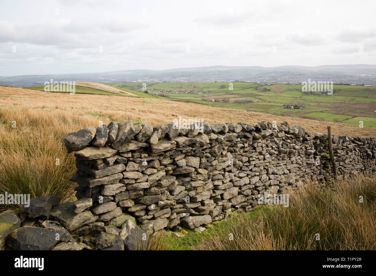 Dry stone walls on hillsides above the village of Barley, in the Borough of Pendle Lancashire. The area is popular with walkers and known for the Pend - Stock Image