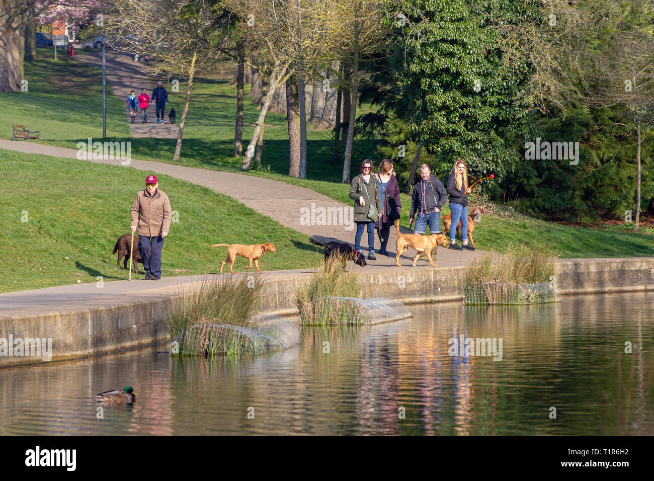 Northampton, Northamptonshire. 28th March 2019. Abington Park. People and dogs enjoying the warm morning sunshine. Credit: Keith J Smith./Alamy Live News - Stock Image
