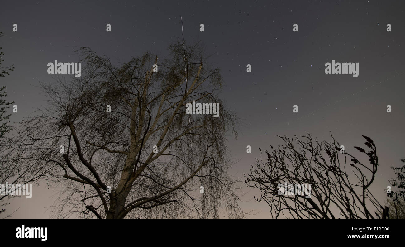 London, UK. 28 March, 2019. The International Space Station flies over London leaving a bright trail in a clear starry sky at 19.58 GMT, gradually sinking behind a tree as it flies to the west in this long exposure image, timed via the NASA website: spotthestation. Credit: Malcolm Park/Alamy Live News. - Stock Image