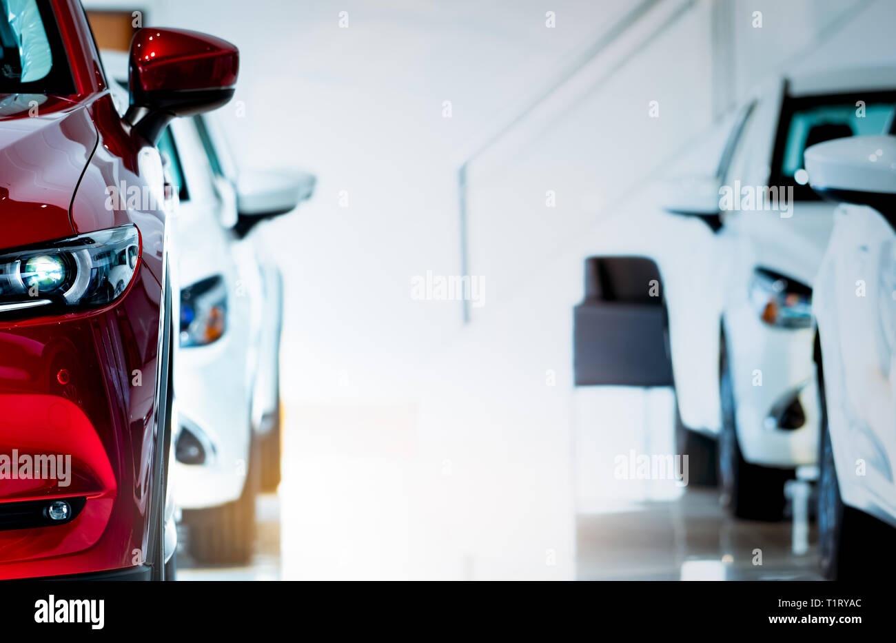 Front View Of Red Car New Luxury Compact Car Parked In Modern Showroom For Sale Car Dealership Office Automobile Retail Shop Electric Car Stock Photo Alamy