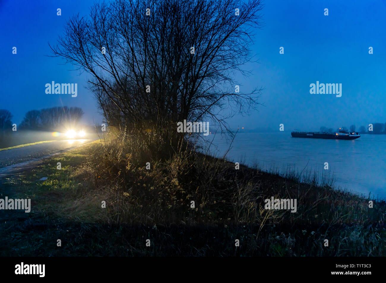 Frachtschiff bei auf dem Rhein bei Xanten, am Niederrhein, bei Nebel in der Dämmerung, Auto auf Landstrasse, - Stock Image