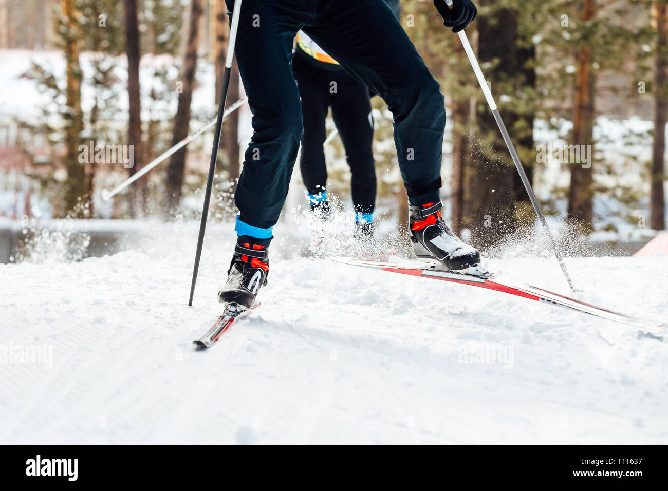 two skiers downhill skiing cross country race - Stock Image