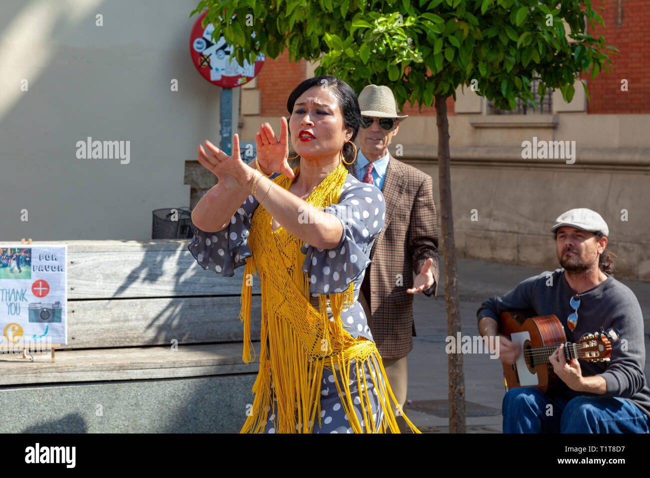Flamenco dancer and singer in Seville, Spain - Stock Image