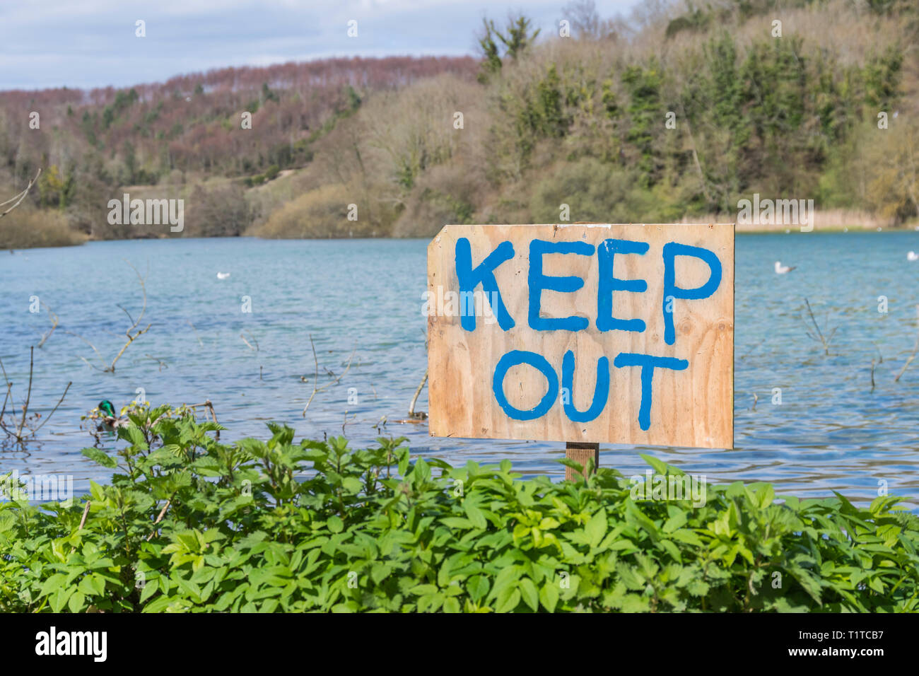Keep Out sign hand written on a wooden sign stuck in the ground by a lake. - Stock Image