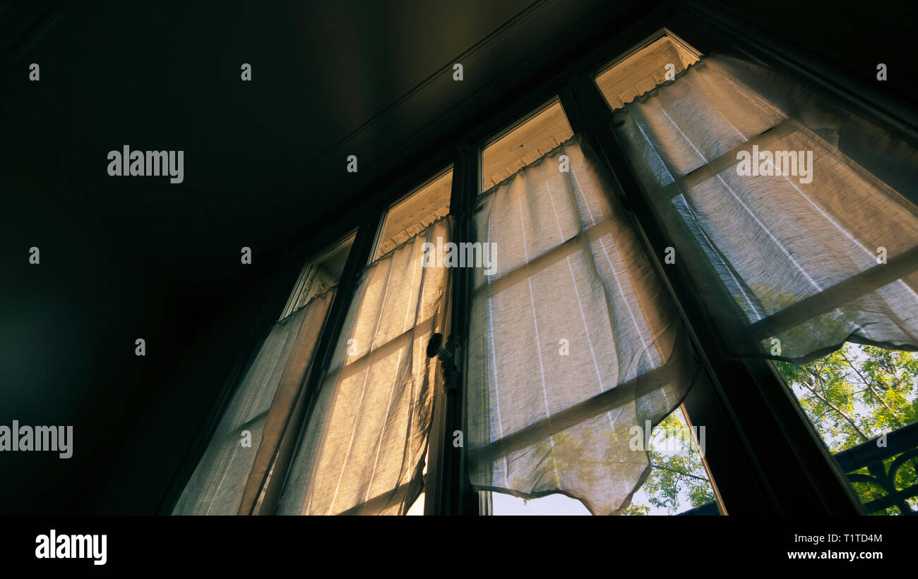Window with net curtains - Stock Image