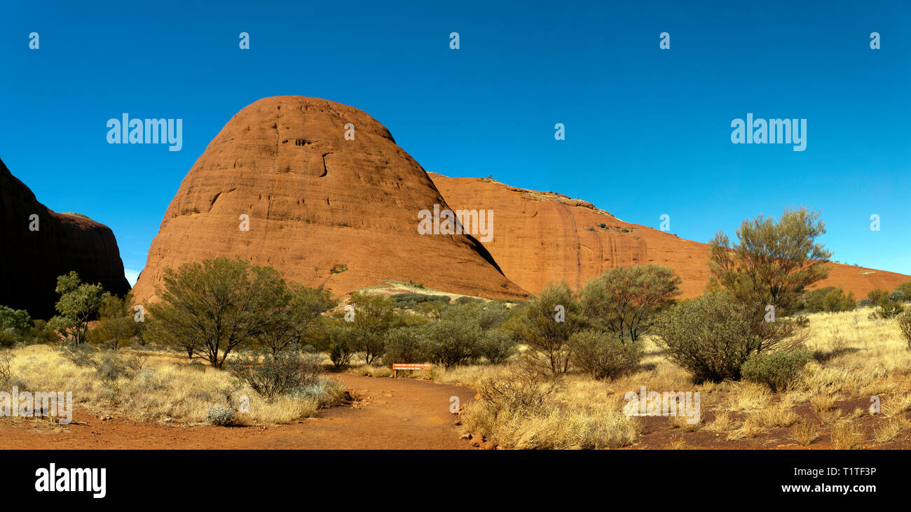Panoramic view of a section of Kata Tjuṯa, close to the start of Valley of the winds at in the Uluru-Kata Tjuṯa National Park, Northern Territory, - Stock Image