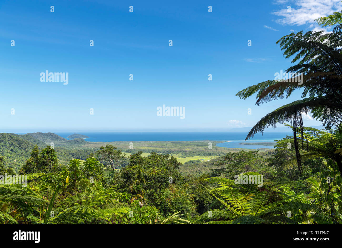 Daintree, Queensland. View from Mount Alexandra Lookout (Walu Wugirriga), Daintree Rainforest, Daintree National Park, Far North Queensland, Australia - Stock Image
