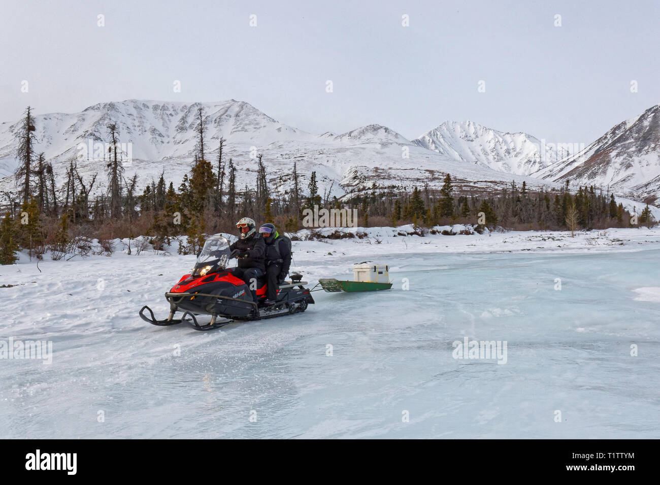 HAINES JUNCTION, YUKON, CANADA, March 12, 2019 : Journey are organized on icefields with snowmobiles. - Stock Image