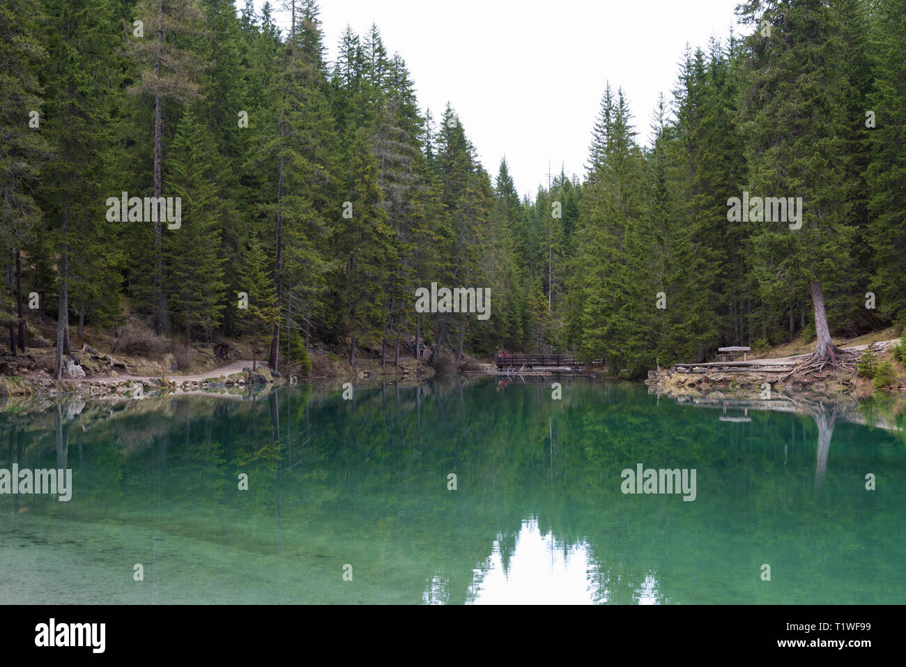 Idyllic lake in Dolomite Apls, Lago di Braies, South Tyrol, Italy - Stock Image