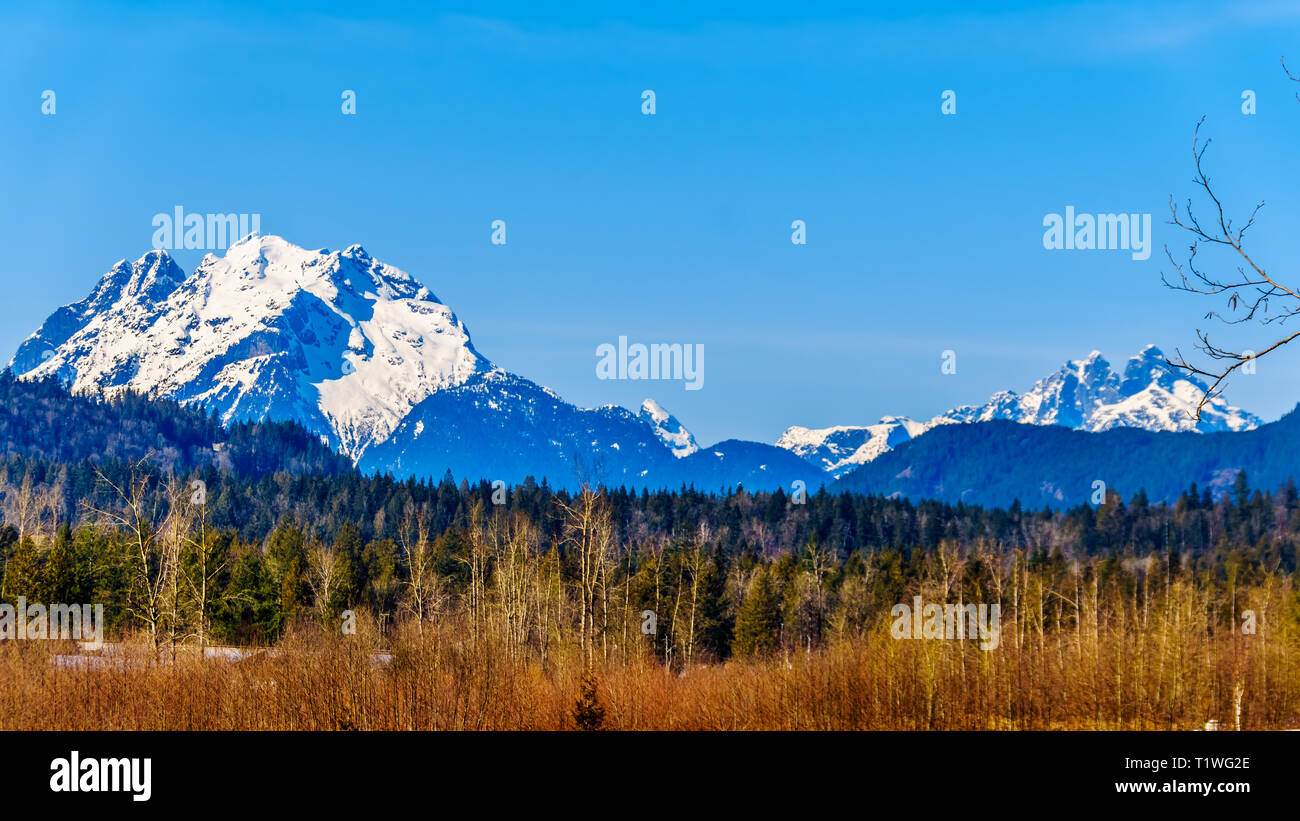 Mount Robie Reid on the left and Mount Judge Howay on the right, viewed from Sylvester Road over the Blueberry Fields near Missionin B.C., Canada - Stock Image