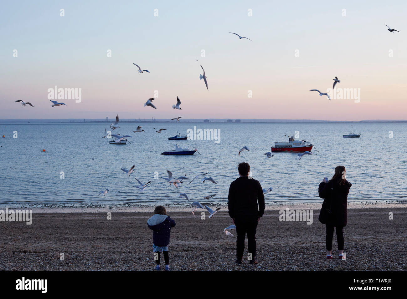 Family feeding seagulls in Southend on Sea - Stock Image