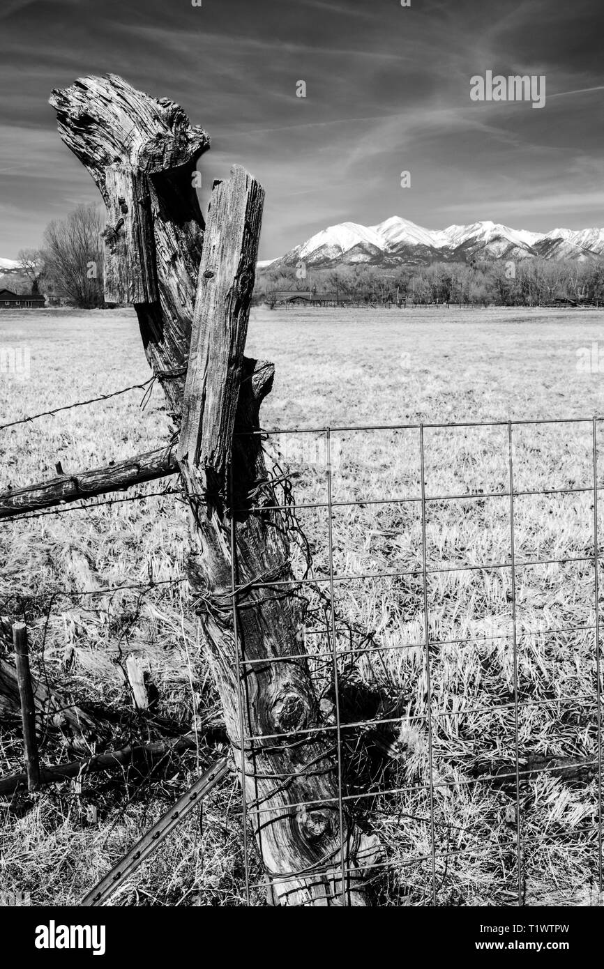 Black & white close-up of barbed wire fence & weathered wooden fence post; snow capped Rocky Mountains beyond; ranch in Central Colorado; USA - Stock Image