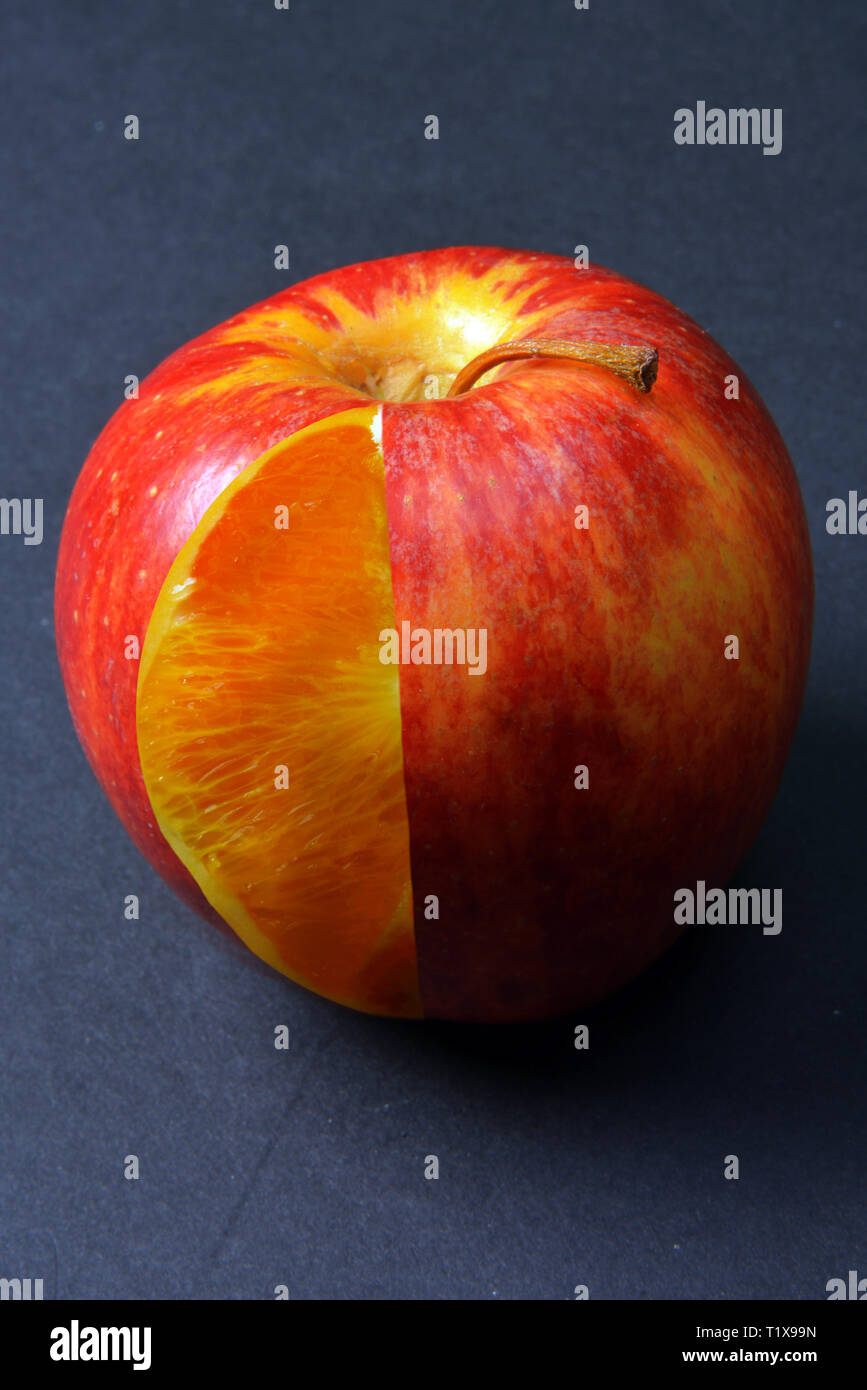 Photoshop composite of a n Apple and Orange combined in one frame. Apple skin and shape, with Orange insides. - Stock Image