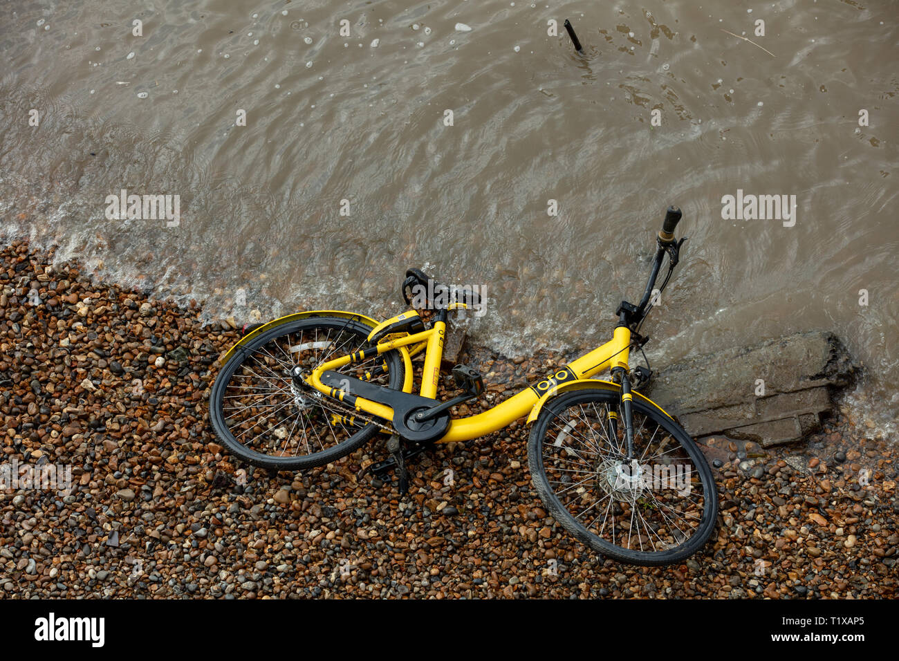 Yellow bicycle emerges from the river Thames, London, England, UK during low tide. - Stock Image