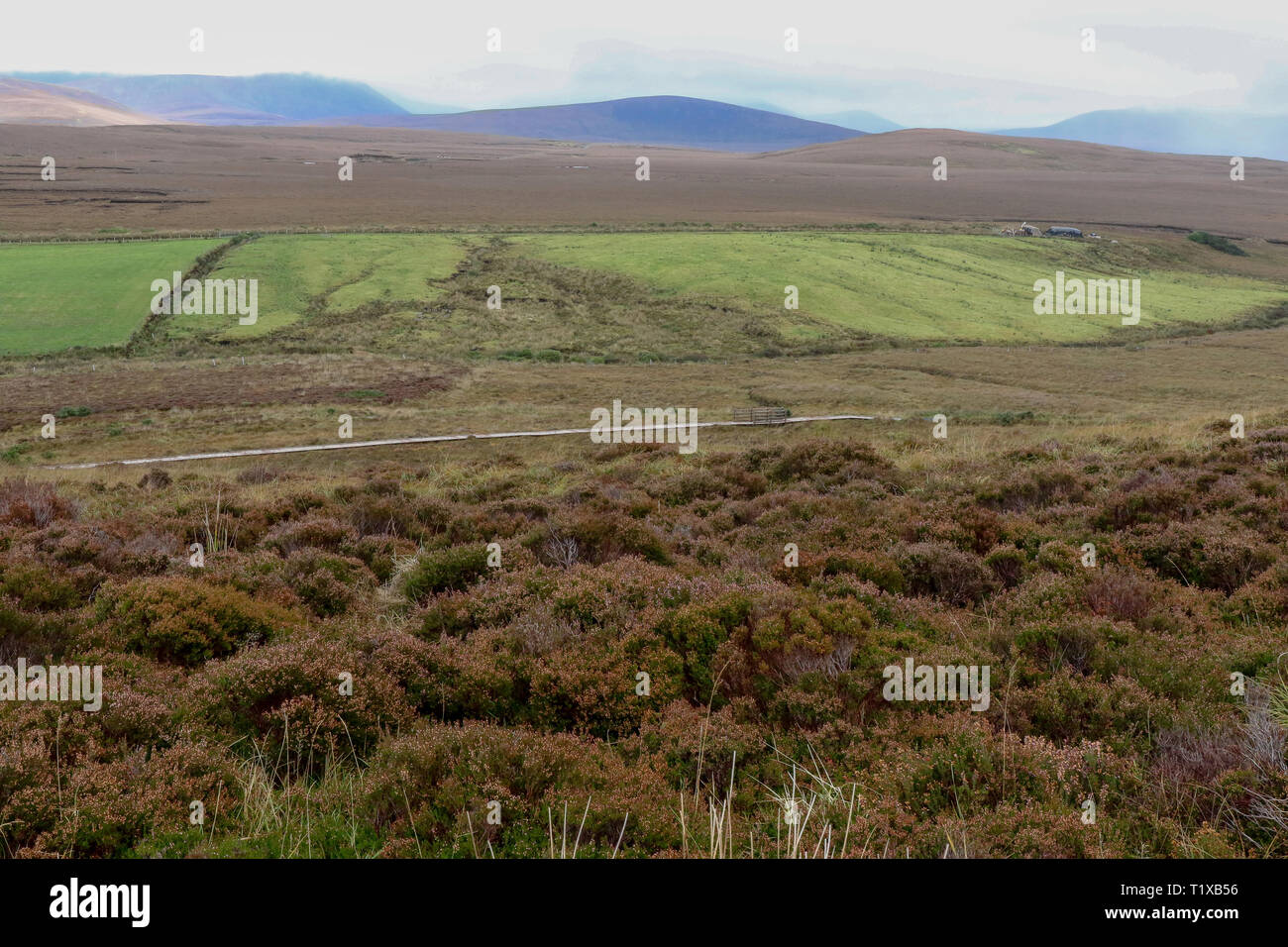 County Mayo landscape in the west of Ireland with a boardwalk visible in the Ballycroy National Park and the Nephin Beg mountains in the distance. Stock Photo